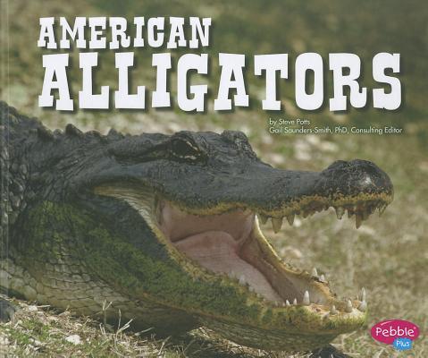 American Alligators By Potts, Steve